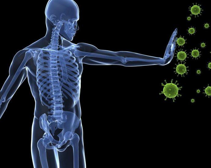 coronavirus y el cuerpo